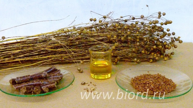 льняное масло очень полезно и должно быть в каждом доме