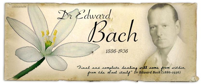 Доктор Эдвард Бах