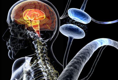 при болезни паркинсона повреждается мозг