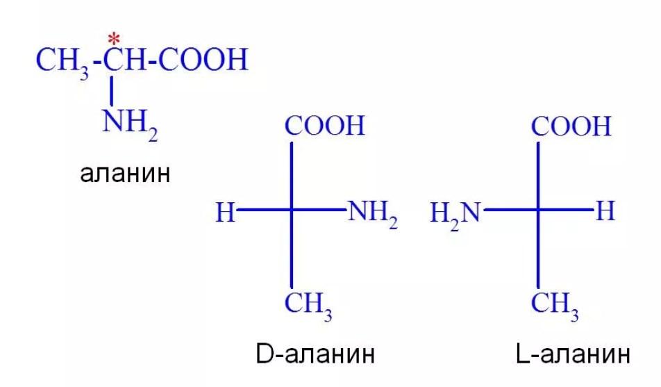 изомерия аланина
