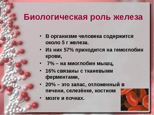 роль железа