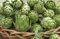 Экстракт листьев артишока от Солгар – быстрая реабилитация функций печени и почек