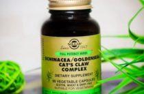 Эхинацея от Солгар – гарант повышения иммунной защиты