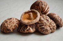 За здоровьем… по грибы: полная информация о баде от Солгар