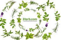 Iherb com на русском языке официальный сайт