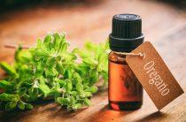 Душистое, полезное: как вытяжка материнской травы влияет на организм.