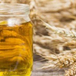 Пророщенные зерна пшеницы. Как изменится Ваше тело, если Вы начнете пить их масло?